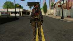 Task Force 141 (CoD: MW 2) Skin 10