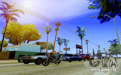 Digize V2.0 Final pour GTA San Andreas