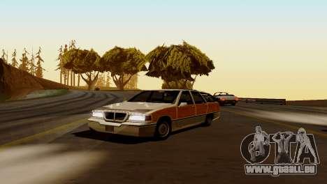 Brand new transport und Einkauf für GTA San Andreas her Screenshot