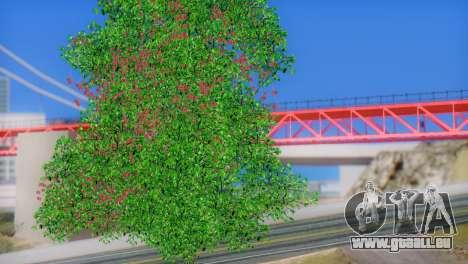 ENB Series by STEPDUDE 3.0 Beta pour GTA San Andreas cinquième écran