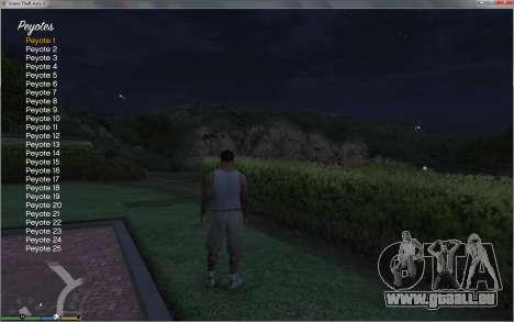 GTA 5 Collectable Collector achten Screenshot