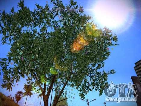 ENB Series Extreme 4.0 für GTA San Andreas zweiten Screenshot