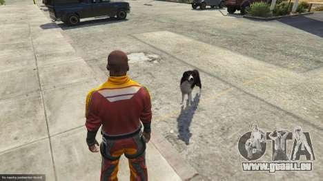 Animal Ark Shelter pour GTA 5