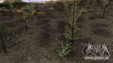 HQ CountN für GTA San Andreas her Screenshot