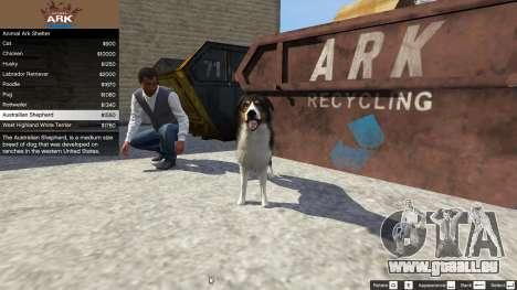 GTA 5 Animal Ark Shelter quatrième capture d'écran