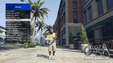 GTA 5 Scenario Menu 1.1 fünfter Screenshot
