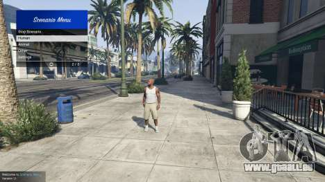GTA 5 Scenario Menu 1.1 zweite Screenshot