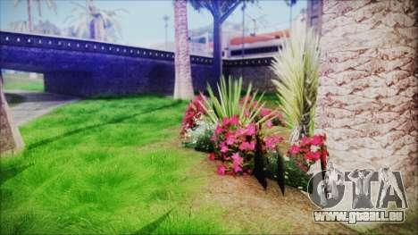 Super Realistic Grass pour GTA San Andreas