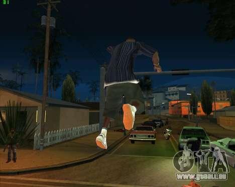 La folie dans l'état de San Andreas v1.0 pour GTA San Andreas neuvième écran