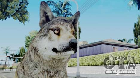 Wolf für GTA San Andreas