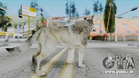 Wolf pour GTA San Andreas troisième écran