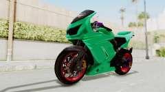 Kawasaki Ninja 250R Race