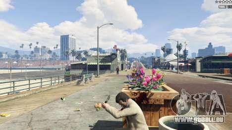 GTA 5 Accuracy Fix dritten Screenshot