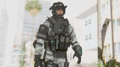 Federation Elite Assault Arctic