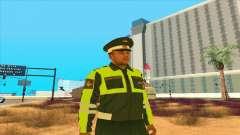 Offizier VAI