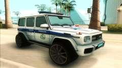 Mercedes-Benz G65 Police