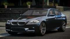 BMW M5 F10 US